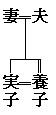 家系図の線 婿養子2